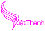 Viện thẩm mỹ Việt Thành